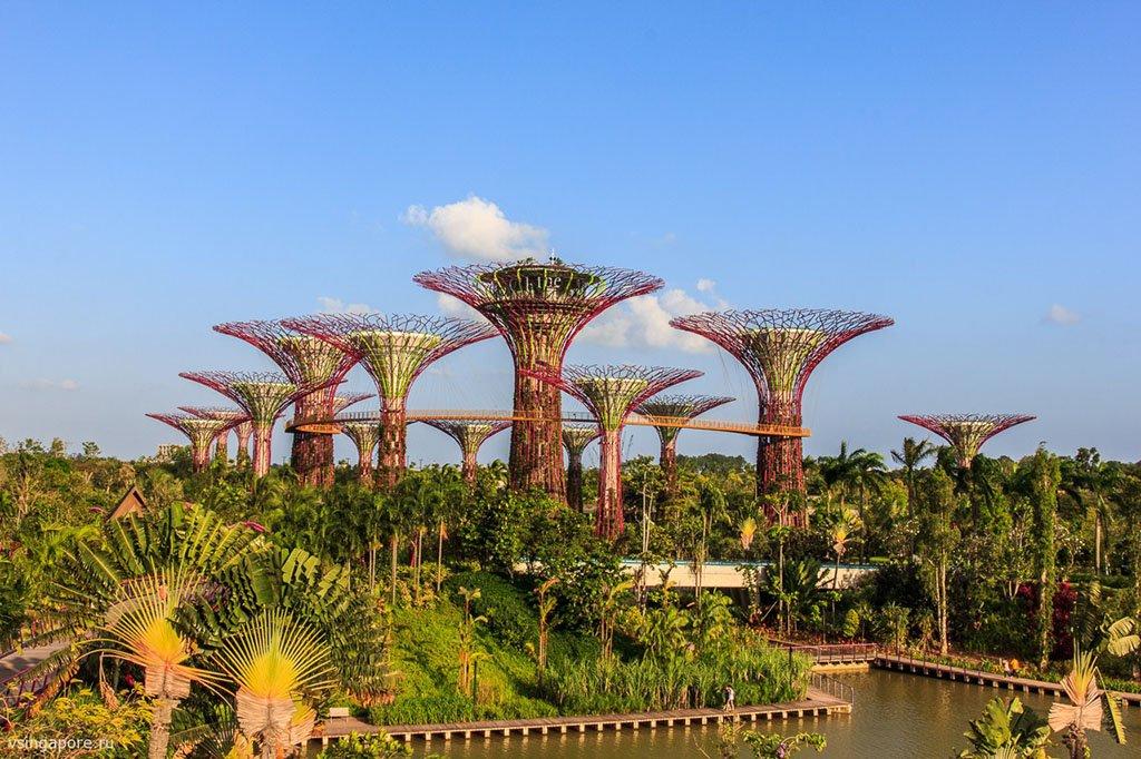 В Сингапуре