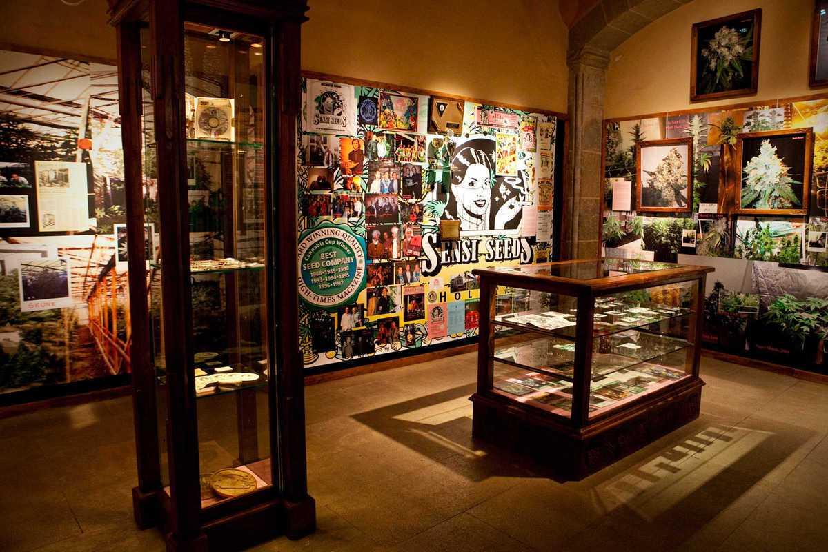 Музей марихуанны