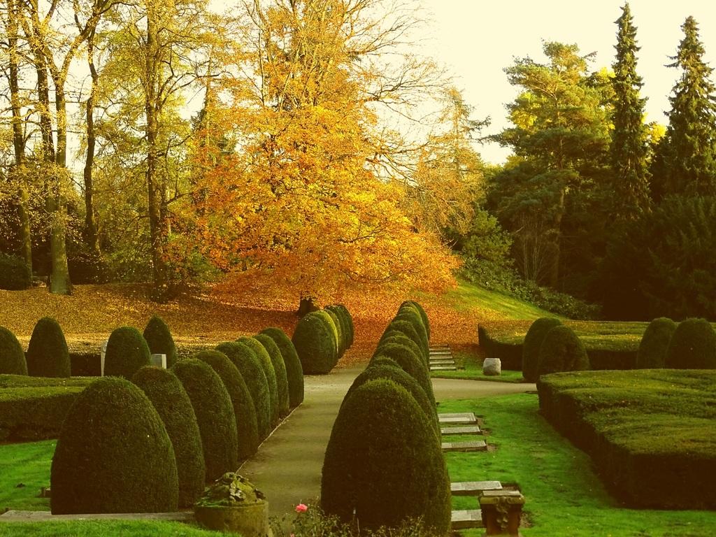 Парк-кладбище