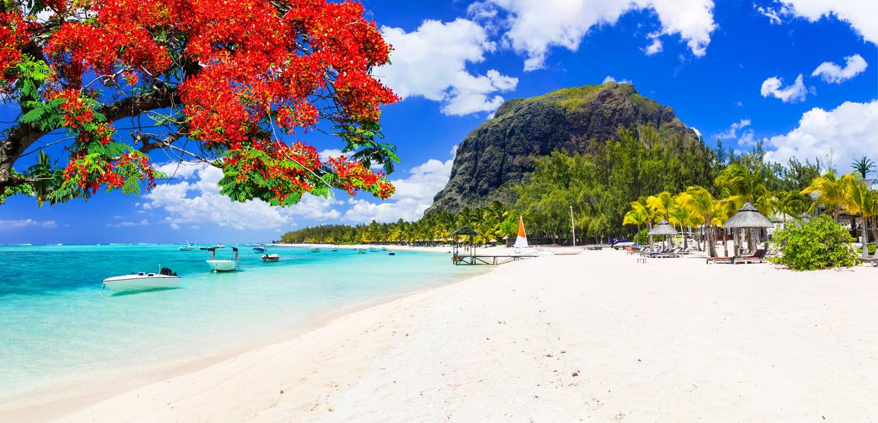 Красота в Маврикии